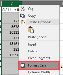 "Image of ""Format Cells"" in excel"